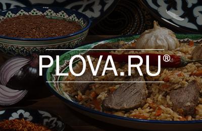 Розробка сайту Plova.ru